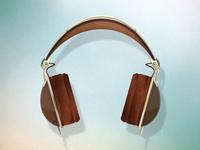 Skull Candy Aviator Headphones