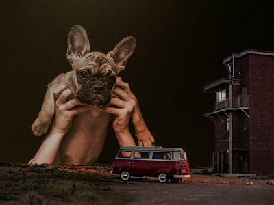 The All-Seeing Puppy Dog photoshop dog