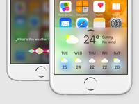 Siri Redesign
