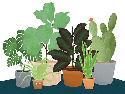 Plant Family custom illustration illustrate plants plant lady illustrating procreate drawing design illustration
