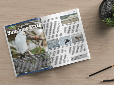 Magazine Page Layout article page magazine design graphic design design page layout