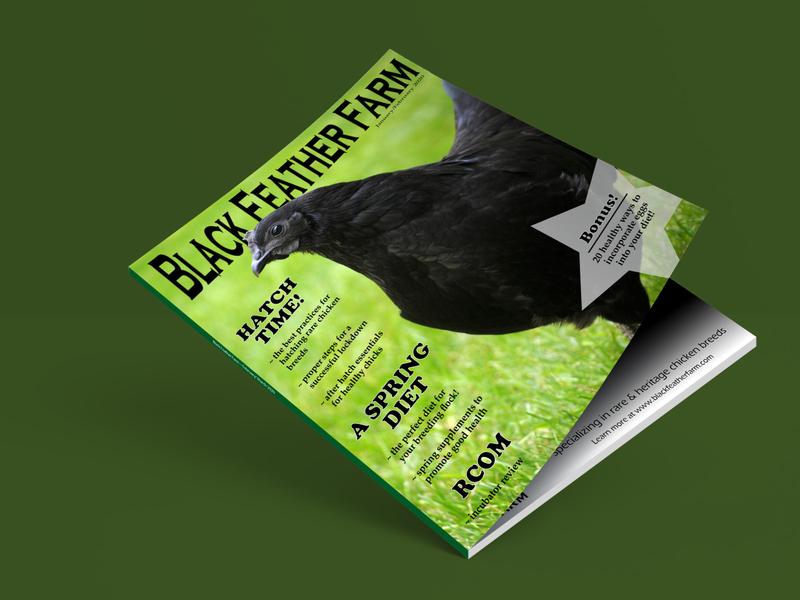 Magazine Cover product design branding magazine design typography graphicdesign magazine cover