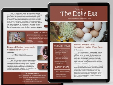 The Pioneer Chicks Newsletter branding page layout digital page layout digital newsletter newsletter template newsletter design newsletter
