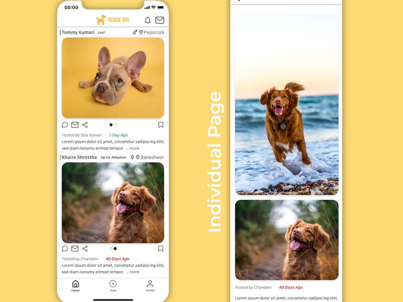 Rescue Pet ux design ui design rescue pets mobile app design product ux ui