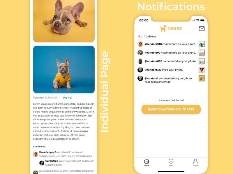 Rescue Pet branding ux design rescue pets ui design mobile app design design product ux ui