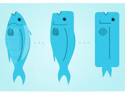 Mahi Mahi Evolution fish evolution hawaii