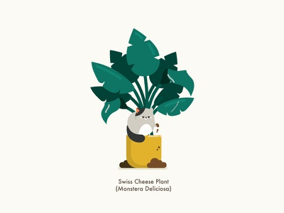 Cat vs Plant plant illustrator character design animal character happy vector illustration cute