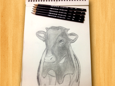 Pencil Sketching by Amarnath on Dribbble