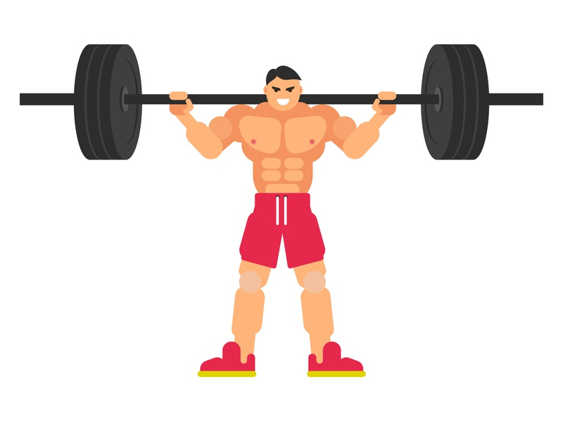 Body building bodybuilding bodybuilder weightlifter illustration exercise fitness muscles character flat vector barbell