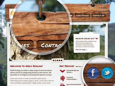 Ecology Revised website texture map ecology eco environment nature topography wood icons twitter facebook chain