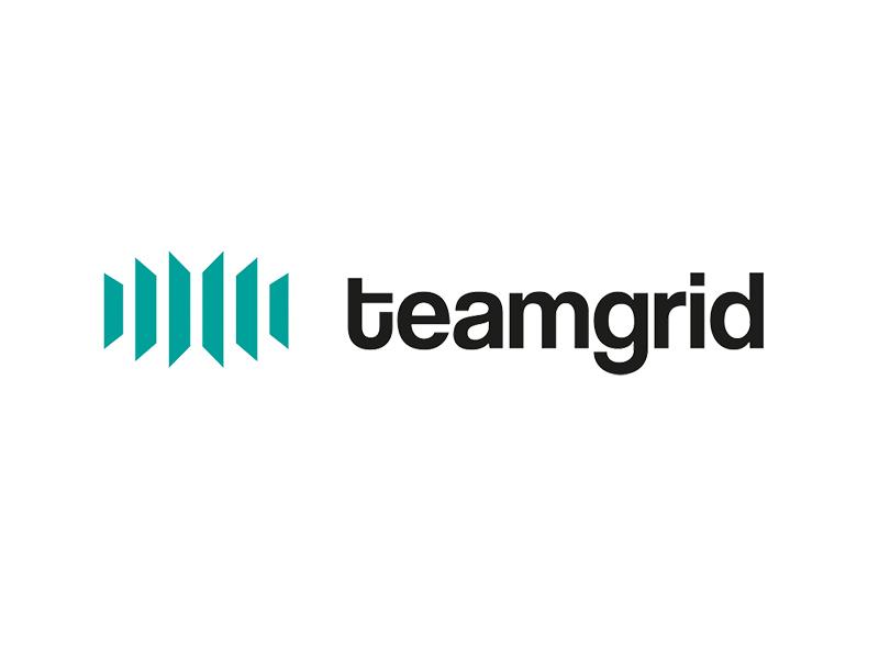 Teamgrid logo