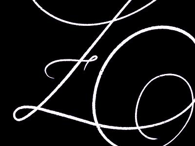 36 Z typespire typespiration typegang typedesign thedailytype letteringco handlettering goodtype calligraphy artoftype 36daysoftypemuymarsu 36daysoftype