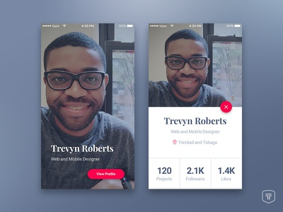 Profile Card profile card ux user ui iphone ios interface
