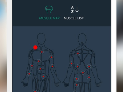 Muscle map ui workout exercise gym muscle map diet