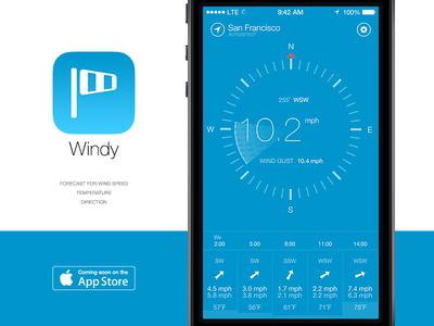 Windy - the wind tracker
