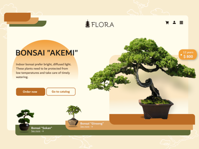 BONSAI Flora Shop UX UI Design design ux  ui ui designer nature shop floral bonsai
