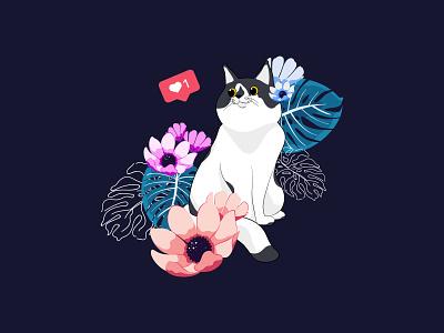 CAT design web illustration vector graphicdesign illustration art
