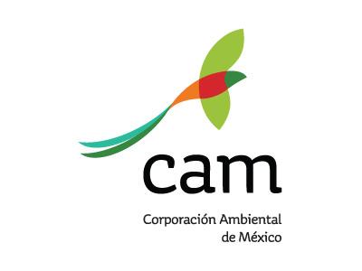 CAM logo brand