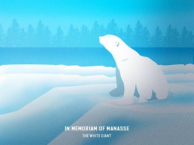 In Memoriam of Manasse: The White Giant - Illustration colour drawing digital vector animal illustration