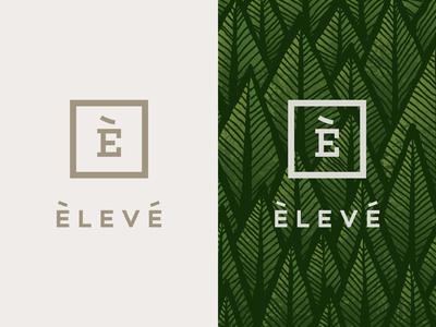Eleve restaurant logo restaurant branding brand logo design logo