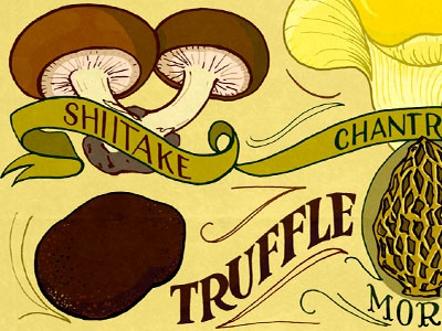 Edible Mushrooms 2 hand lettering illustration typography food mushrooms