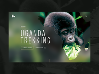 Destinations hero re-design — Uganda