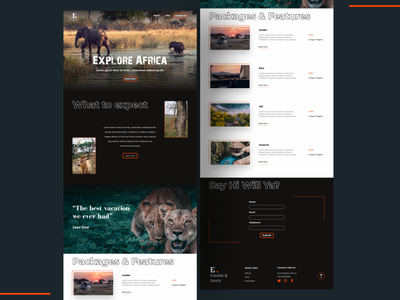 Beautiful Africa. Wild life Tourism Website web designer wordpress website wordpress design web design web ui clean visual design landing page creative ux minimalistic animation webdesign website ui design