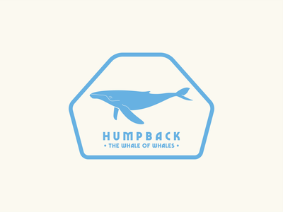 Humpback - The Whale of Whales sticker design badge design illustration graphic design flat design