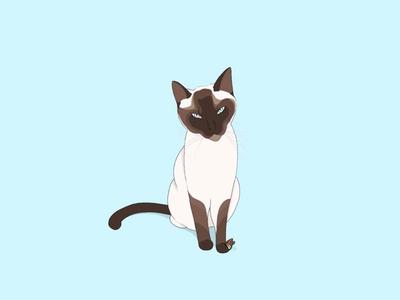In memory 🐱 procreate digitalart butterfly blue cat