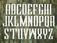 Untitled Typeface