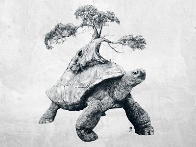 Tortoise Tree - Growth tortoise tree shell turtle illustration drawing art nerd