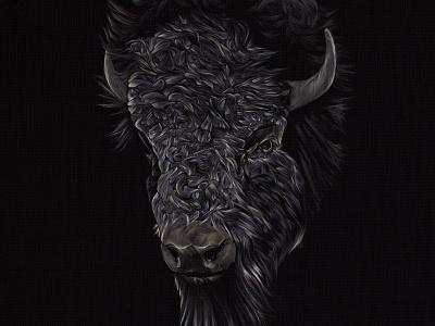 Bison bison buffalo animals wildlife illustration drawing detail colour technique