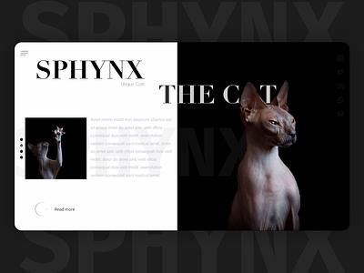 Sphynx cat web ui style figma design