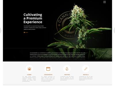 Cannabiotix NV weed cannabis webdesign design branding