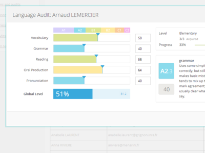 Language audit form