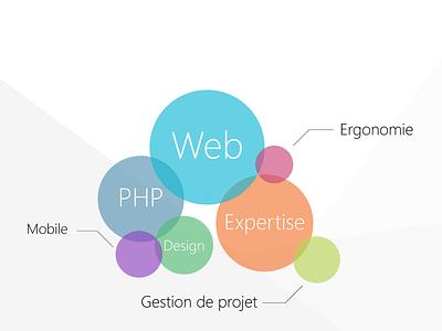 Web agency skills web agency french php web design illustration skills colors circles wixiweb rouen