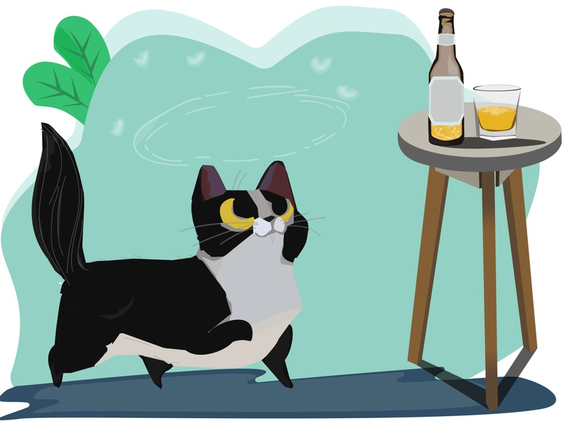 Drunk Cat concept art procreate cute pet kitten cat cartoon animals illustration