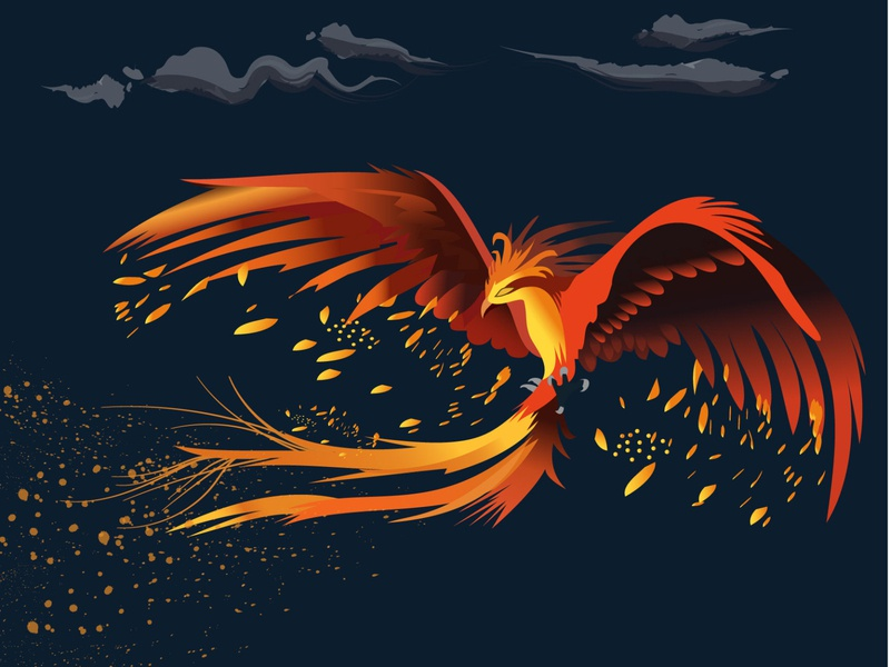 Phoenix hogwarts vector wings wing illustration flame fire feather characterdesign character harrypotter dumbledore bird phoenix harry potter