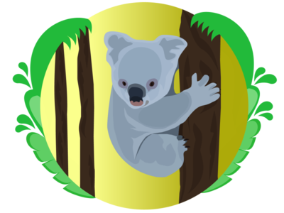 Koala wild animal forest beautiful safari flat character design illustration nature trees koala koala bear cute wildlife animals australia