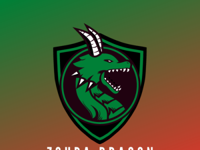 ZOUPA DRAGON  1 app web ui ux icon logo design
