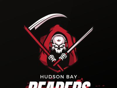hudson Bay ui web app ux icon logo design