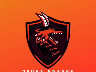 ZOUPA DRAGON ui web app ux logo icon design