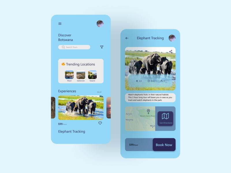 Discover Botswana Concept App travel tourism figma ui app