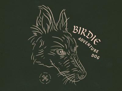 Birdie Adventure Dog illustration adventure dog