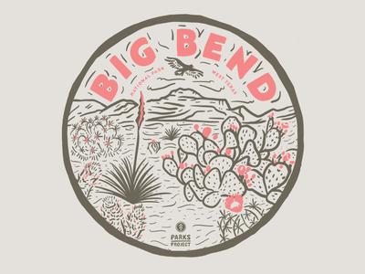 Big Bend nature cacti cactus national parks national park big bend