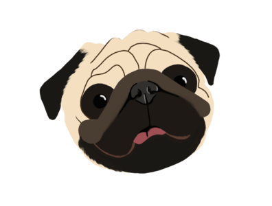Pipo pug doggy illustration design dog illustration pug dog