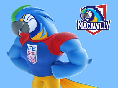 Macawlly - Logo and mascot logo design zbrush mascot design illustration character design 3d art
