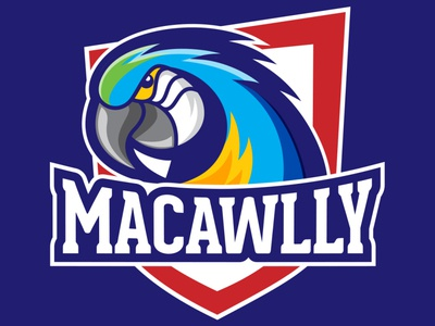 Macawlly logo illustration art character design mascot design graphic design illustration brand identity logo design logo