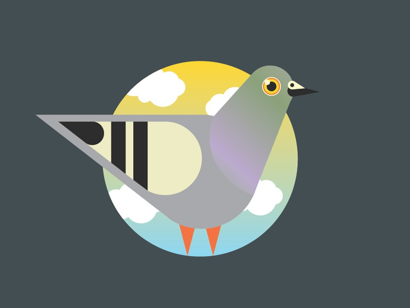 City Buddy pigeon vector lil buddy charles harper