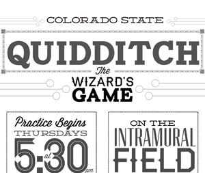 CSU Quidditch Poster quidditch losttype poster